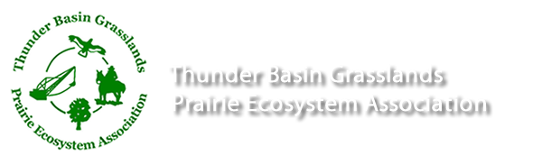 thunderbasin-logo